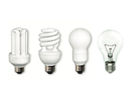 Various lightbulbs with a white background