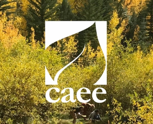 Colorado Alliance for Environmental Education logo, aspen trees in the background