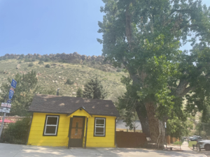 A picture of a yellow house in Estes Park surrounded by trees and a tall hill